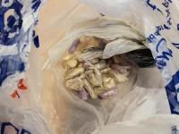 Кот подставил хозяина, принеся домой пакет с кокаином