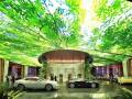 В Дубае откроется отель с тропическим лесом