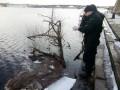 В Киеве из реки достали утопленницу