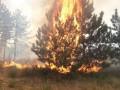 Возле Запорожской АЭС вспыхнул пожар