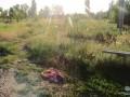 В Киевской области пьяный муж убил жену