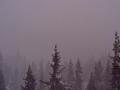 Карпатский курорт атаковала неумолимая снежная буря