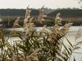 В Винницкой области утонули три рыбака