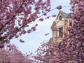 16 марта: Какой сегодня праздник, традиции, запреты