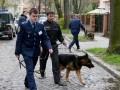 Неизвестный напал на замначальника Налоговой милиции Львовской области