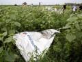 Боевики мешают расследованию крушения авиалайнера – СНБО
