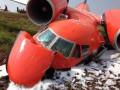 Украинский грузовой самолет разбился из-за попадания птиц в двигатель