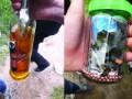Наркопритон и свалка: очередной лагерь цыган разгромили в Киеве