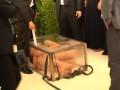 Российский художник полностью голым залез в аквариум
