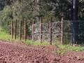 Россия строит забор на границе с Польшей - СМИ
