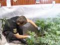 Под Киевом накрыли масштабную нарколабораторию