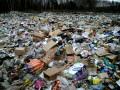 Во Львовской области на мусорной свалке нашли тело новорожденного ребенка