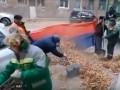 В РФ опавшую листву собирали в российский флаг
