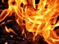 Феминистки в Мексике подожгли правительственное здание