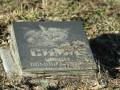 Одесские коммунальщики уничтожают могилы животных в городских парках