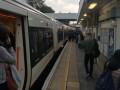 В Лондоне мужчина с ножом напал на пассажира поезда