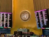 Итоги 17 декабря: Резолюция по Крыму, акция проституток