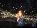 В Киеве во время открытия главной елки загорелась гирлянда