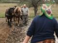 Налог на землю в Украине: Сколько и когда нужно платить