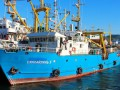КНДР отпустила задержанное российское судно