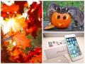 Позитив дня: мир отмечает Хэллоуин и старт продаж iPhone 6 в Украине