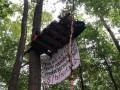 В Германии полиция зачищает лес от эко-активистов