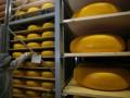 Экспорт украинского сыра в Россию полностью восстановлен - Ъ