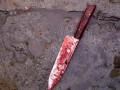 В Харьковской области 73-летний истец ранил двоих человек, а после ударил себя ножом в шею