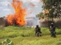 В Нигерии при нападении боевиков погибли 50 человек