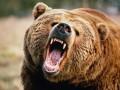 Отважный пастух убил медведя голыми руками (ФОТО)