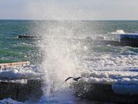 Ледяной шторм: Как выглядит зимнее море в Одессе