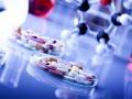 В аннексированном Крыму будут производить свои лекарства
