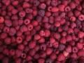 Для столовых власти купили малину по 672 гривны за килограмм