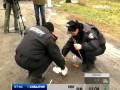 По делу об избиении Татьяны Чорновол уже допрошены 50 свидетелей