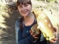 Во Львовской области нашли белый гриб-гигант
