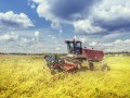 МВФ не считает земельную реформу обязательным условием для транша