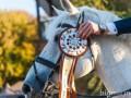 Под Киевом прошел Международный конный турнир