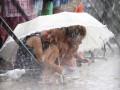 В пятницу Украину ждут похолодание и дожди с грозами