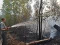 На Киевщине третьи сутки горит лес