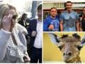 День в фото: Фарион в ГПУ, Кличко с фанами и жираф в венгерском зоопарке