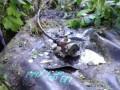 Во Львовской области СБУ выявила врезку в нефтепровод