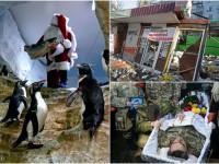 День в фото: прощание с погибшим на Светлодарской дуге, погром МАФов в Киеве и рыба от Санты