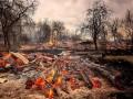 Пожары на Житомирщине: осталось два очага
