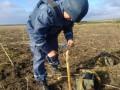 В Днепропетровской области нашли 100-килограммовую бомбу времен Второй Мировой