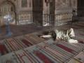 В Катаре госпитализировали десятки человек с обострением гастрита в первый день Рамадана