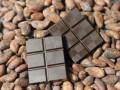 В Варшаве установили пальму из шоколада