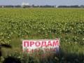Украинскую землю запретят продавать россиянам