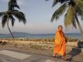 В Таиланде нашли повешенным на дереве гражданина России
