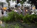 От урагана в Брисбене пострадали 40 человек