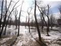 Метеоролог рассказала, когда в Украине выпадет снег